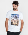 BOSS Hugo Boss Teear 1 T-shirt